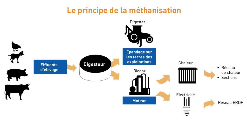 principe méthanisation